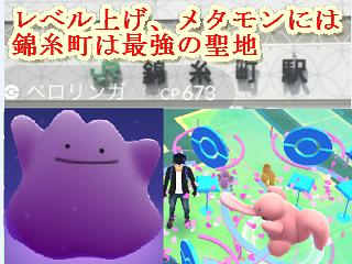 Go 確率 ポケモン メタモン