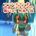 Pokemon Masyado Ikusei
